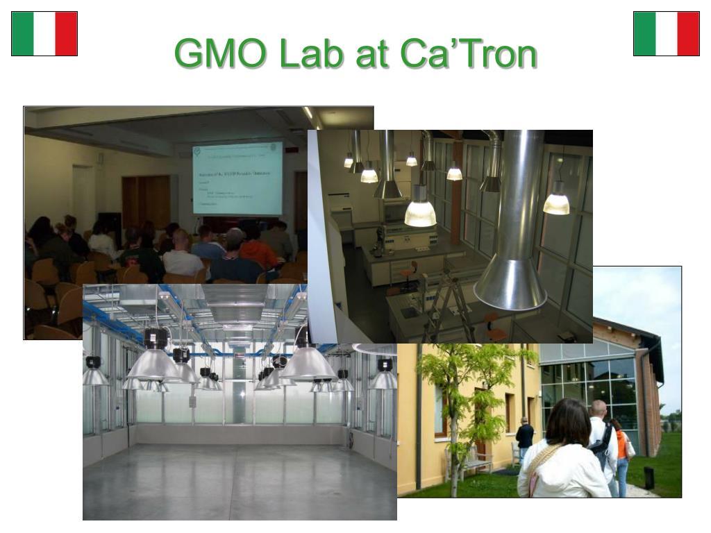 GMO Lab at Ca'Tron