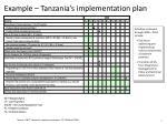example tanzania s implementation plan