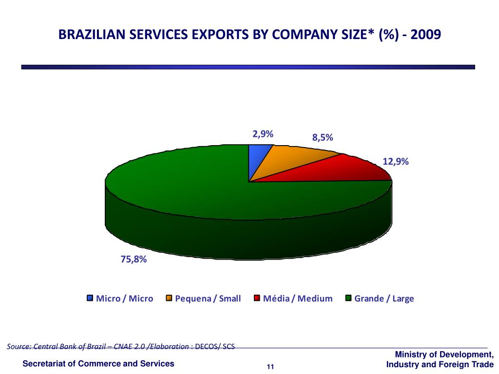 BRAZILIAN SERVICES EXPORTS BY COMPANY SIZE* (%) -