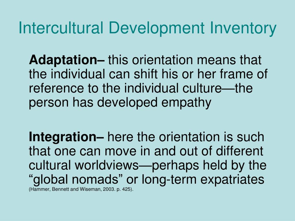 Intercultural Development Inventory
