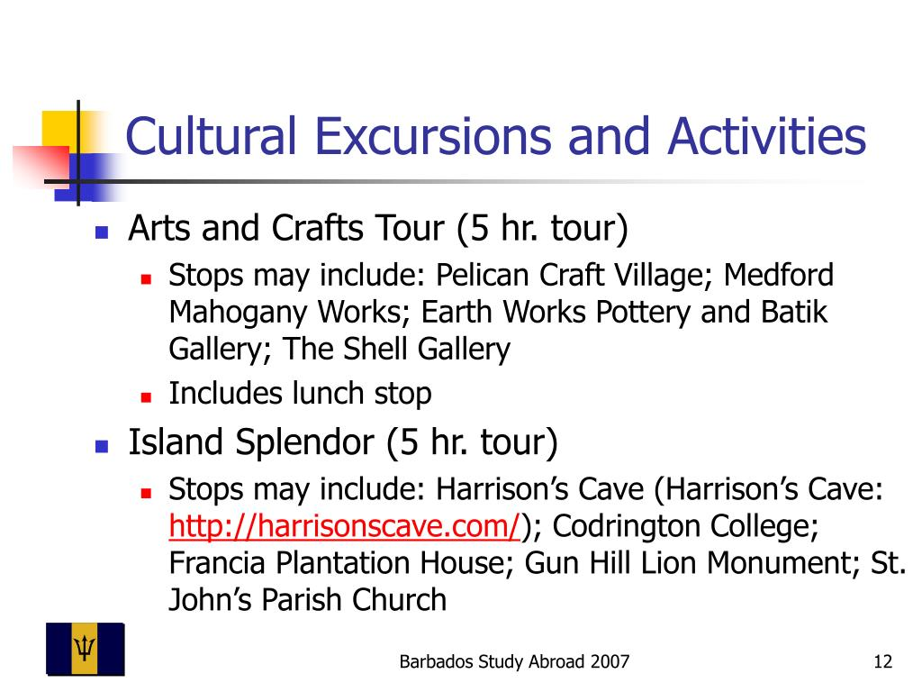 Cultural Excursions and Activities