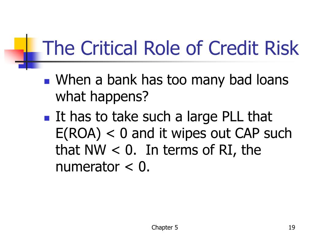 The Critical Role of Credit Risk