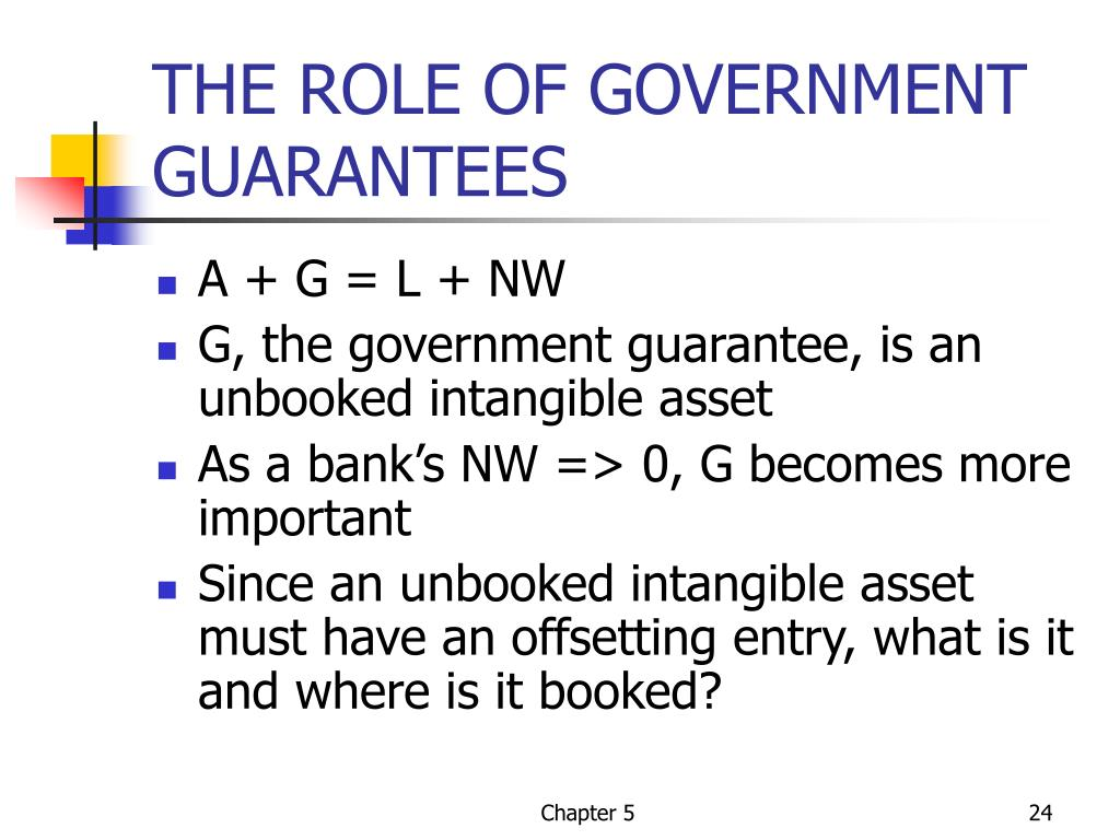 THE ROLE OF GOVERNMENT GUARANTEES