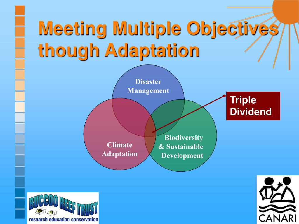 Meeting Multiple Objectives though Adaptation