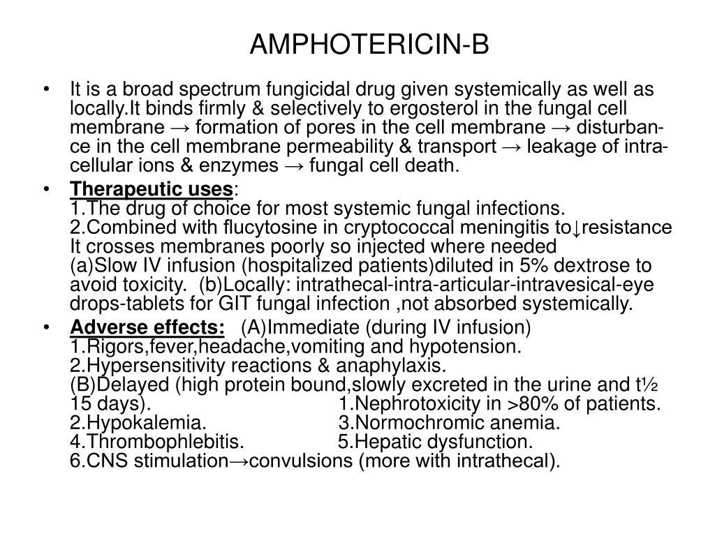 AMPHOTERICIN-B