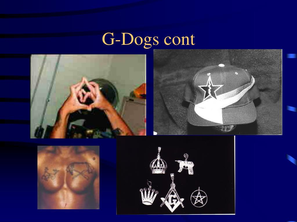 G-Dogs cont