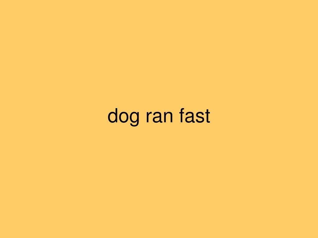 dog ran fast
