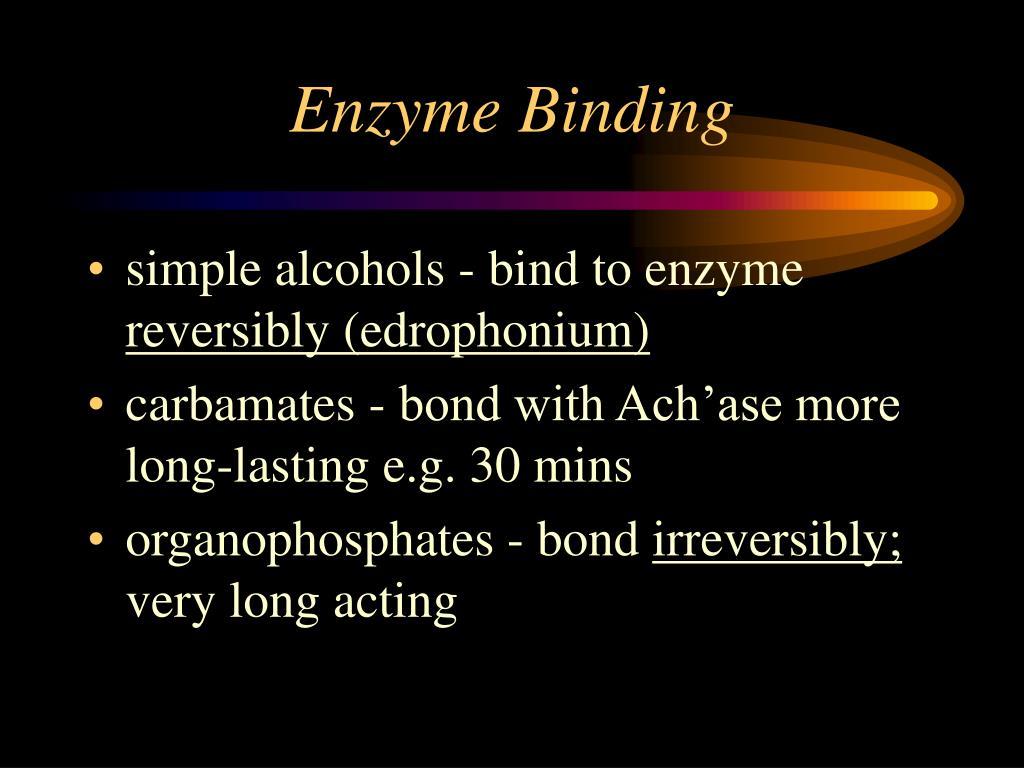 Enzyme Binding