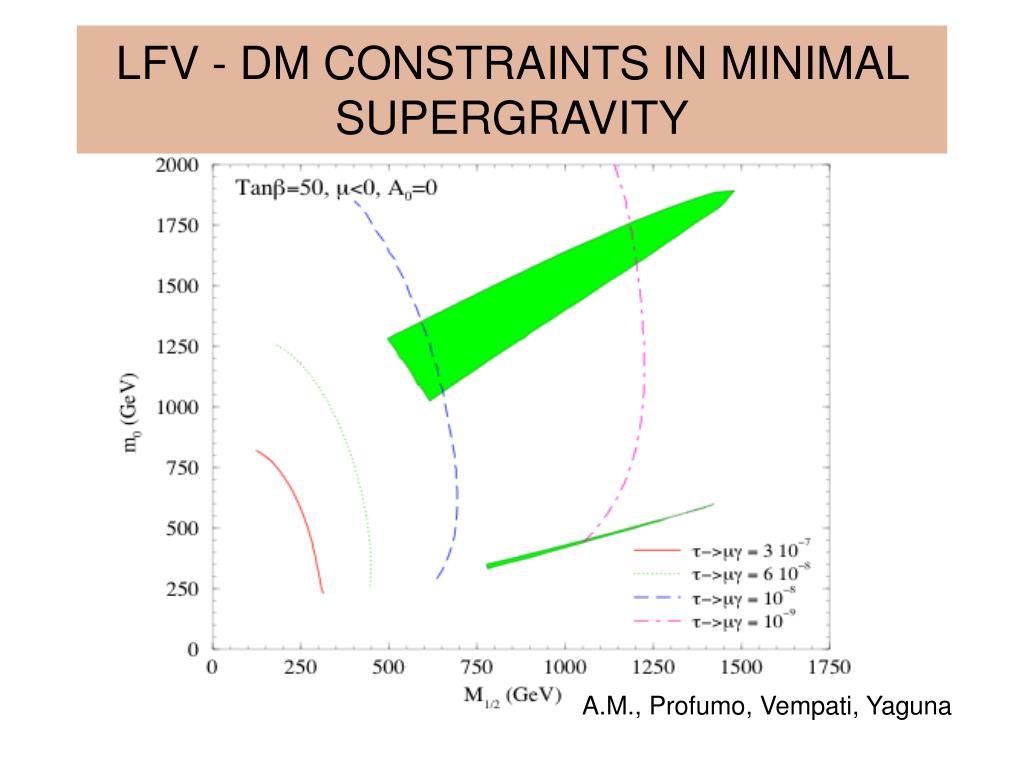 LFV - DM CONSTRAINTS IN MINIMAL SUPERGRAVITY
