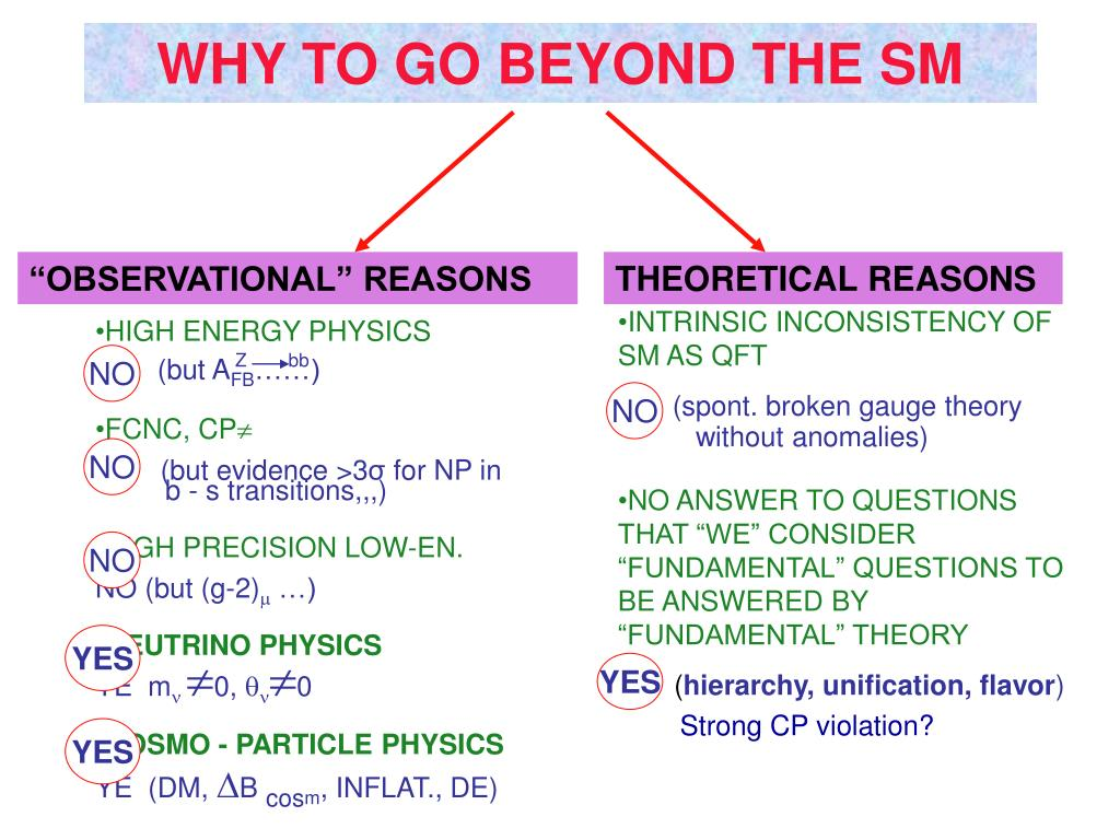 WHY TO GO BEYOND THE SM