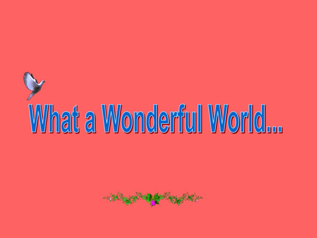 What a Wonderful World...