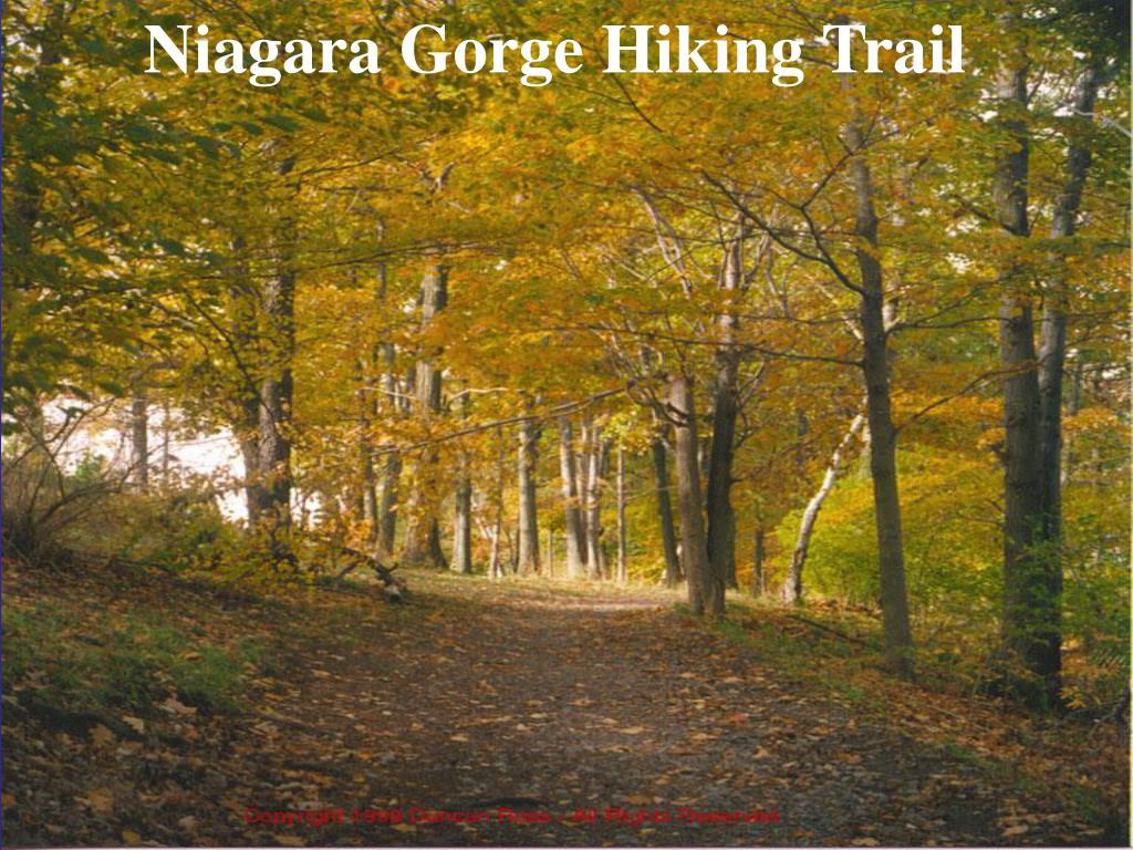 Niagara Gorge Hiking Trail