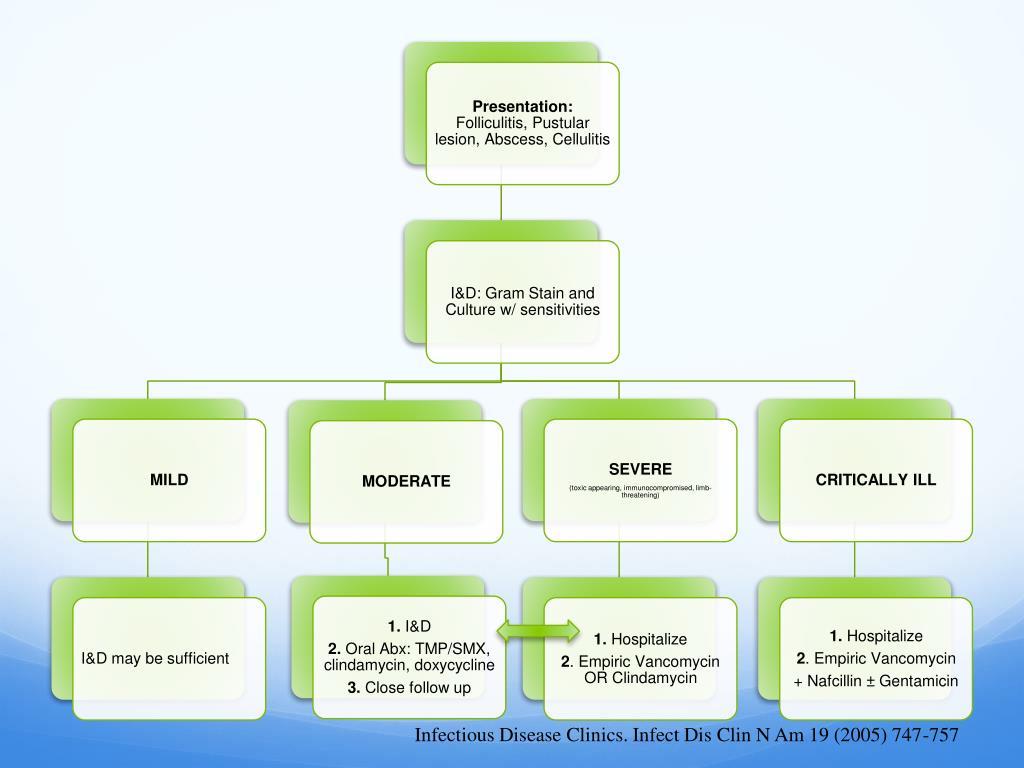Infectious Disease Clinics. Infect Dis Clin N Am 19 (2005) 747-757