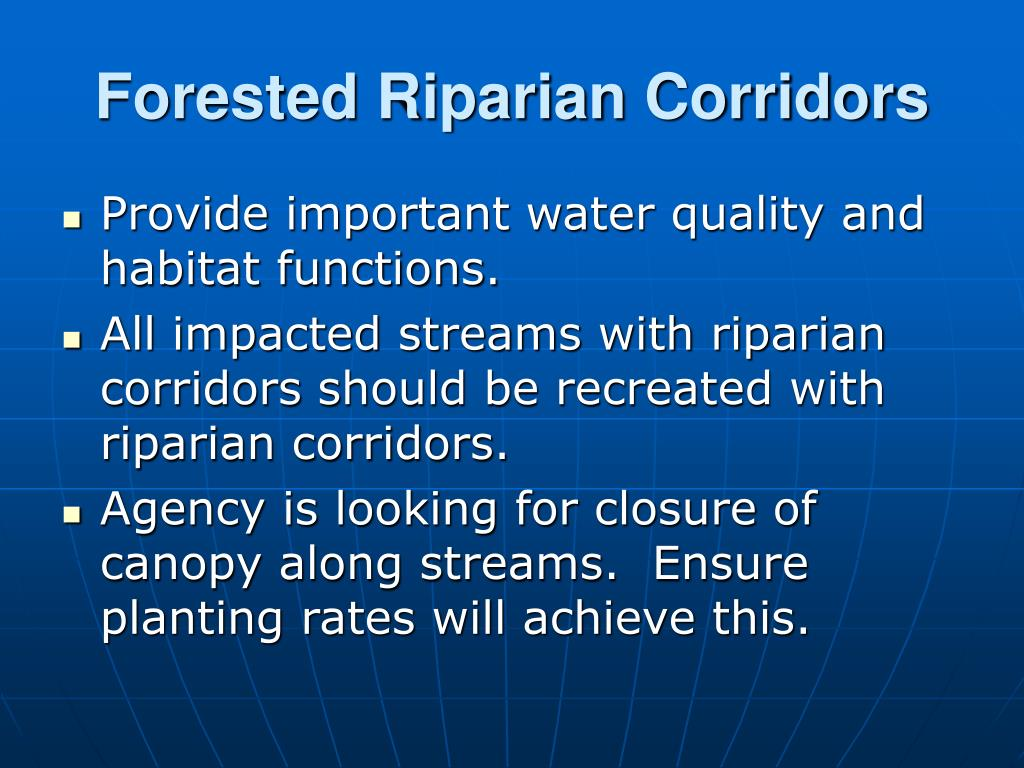 Forested Riparian Corridors