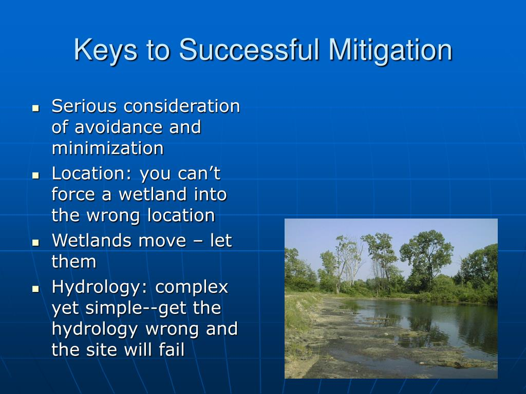 Keys to Successful Mitigation