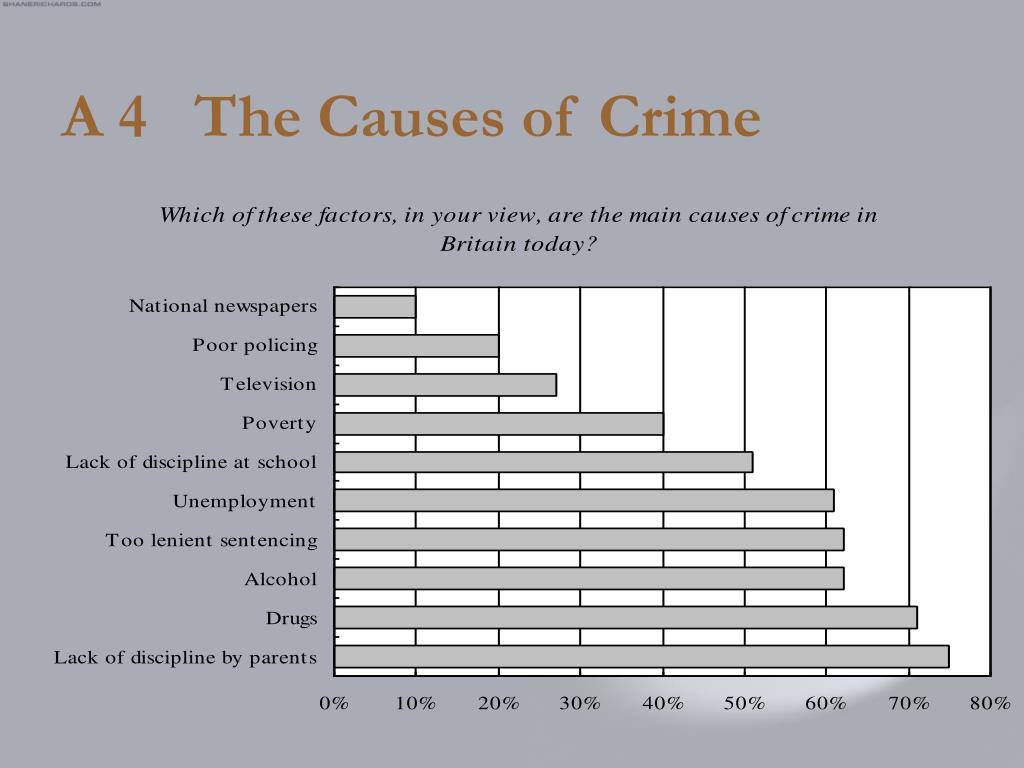 A 4   The Causes of Crime