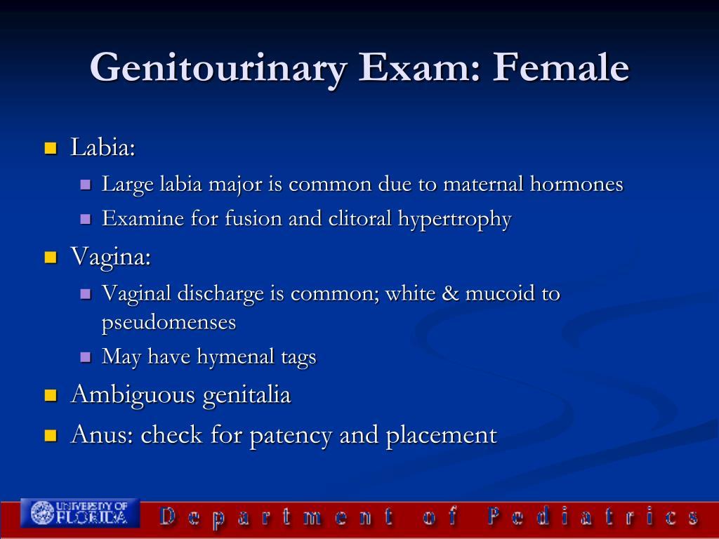 Genitourinary Exam: Female