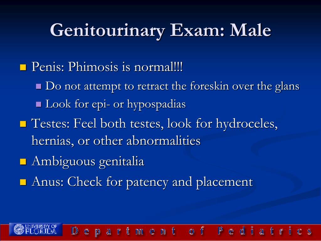 Genitourinary Exam: Male