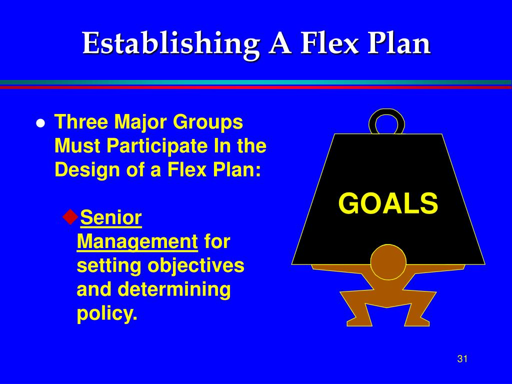 Establishing A Flex Plan