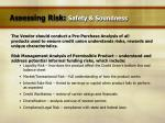 assessing risk safety soundness