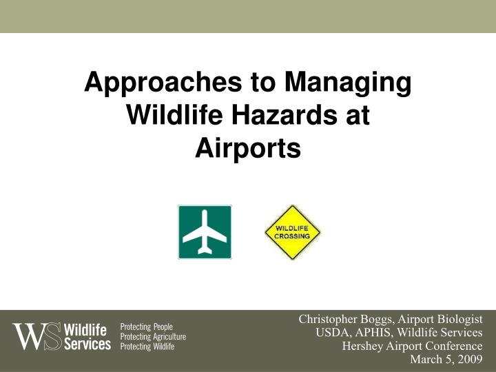 Approaches to managing wildlife hazards at airports