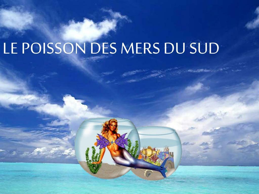 LE POISSON DES MERS DU SUD