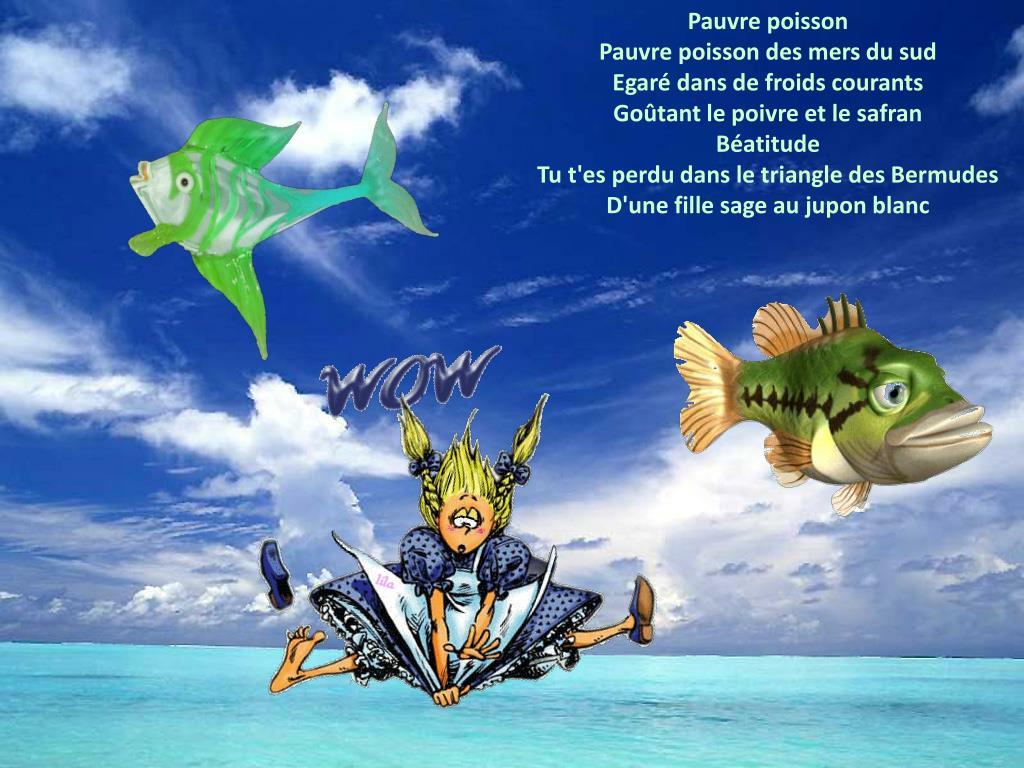 Pauvre poisson