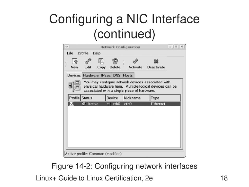 Configuring a NIC Interface (continued)