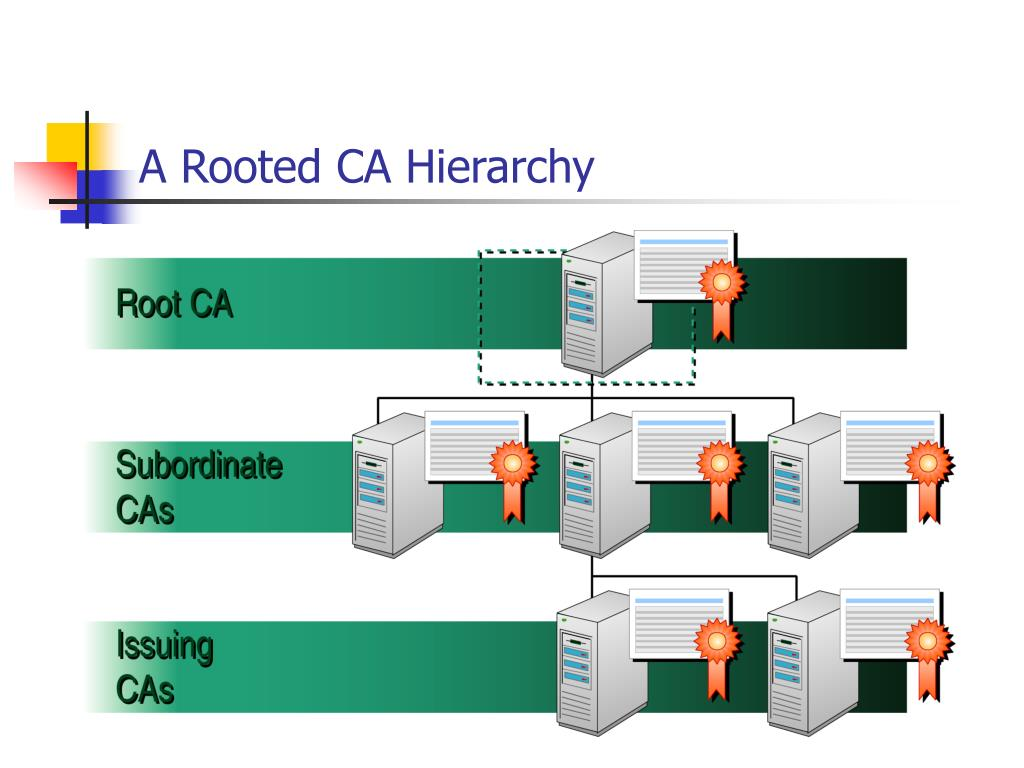 A Rooted CA Hierarchy