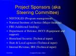 project sponsors aka steering committee
