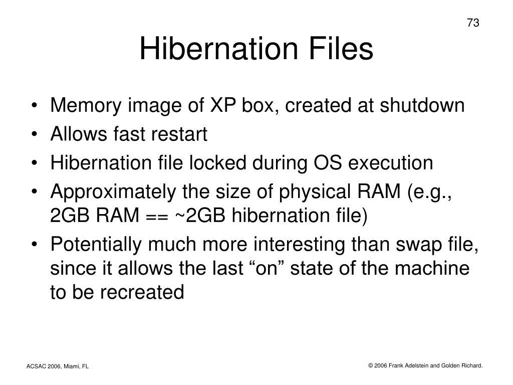 Hibernation Files
