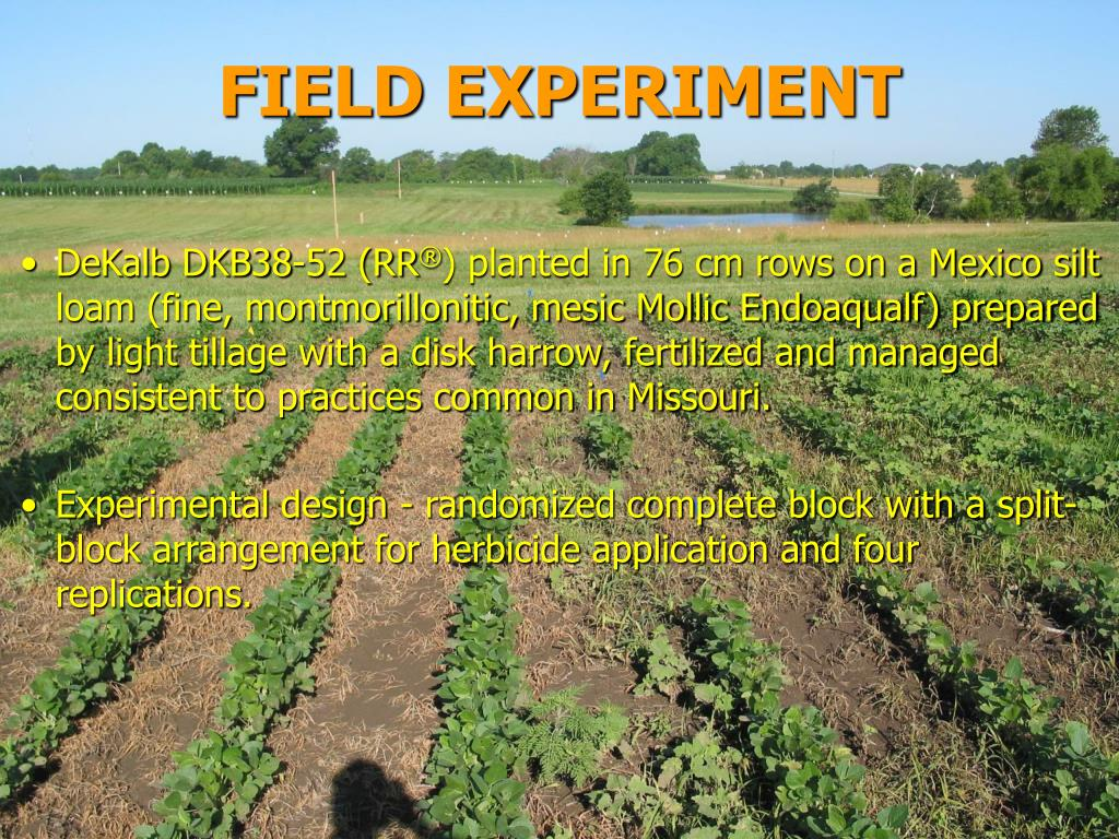 FIELD EXPERIMENT