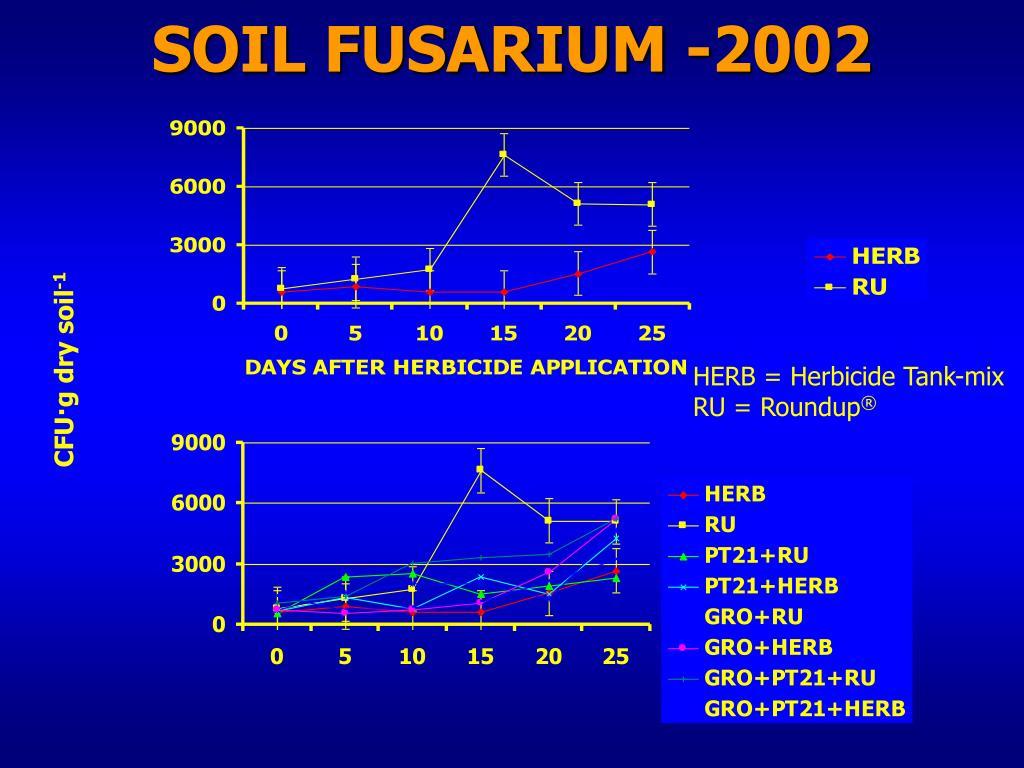 SOIL FUSARIUM -2002