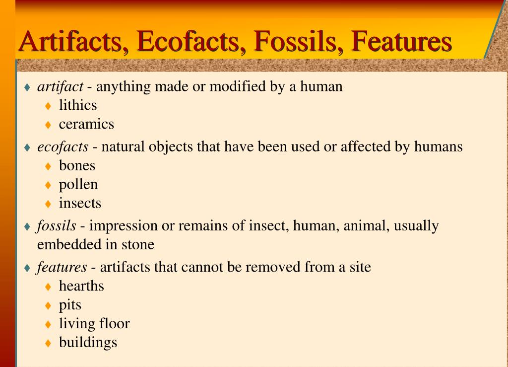 Artifacts, Ecofacts, Fossils, Features