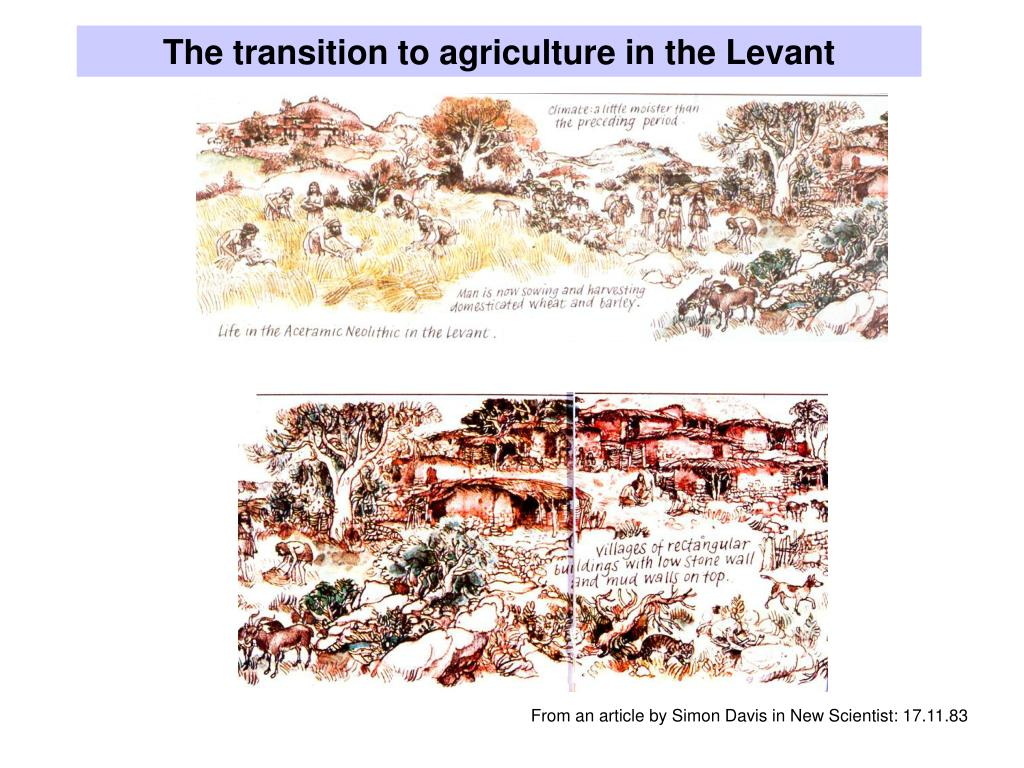 The transition to agriculture in the Levant