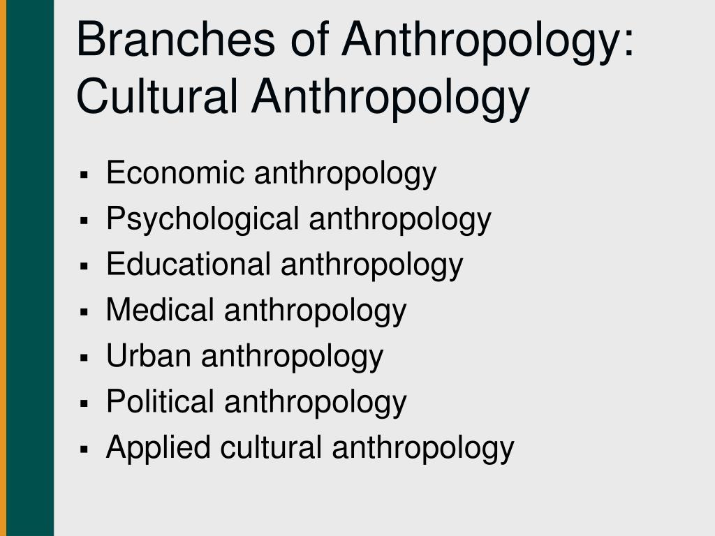 Branches of Anthropology: Cultural Anthropology