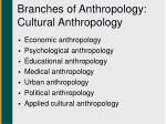 branches of anthropology cultural anthropology