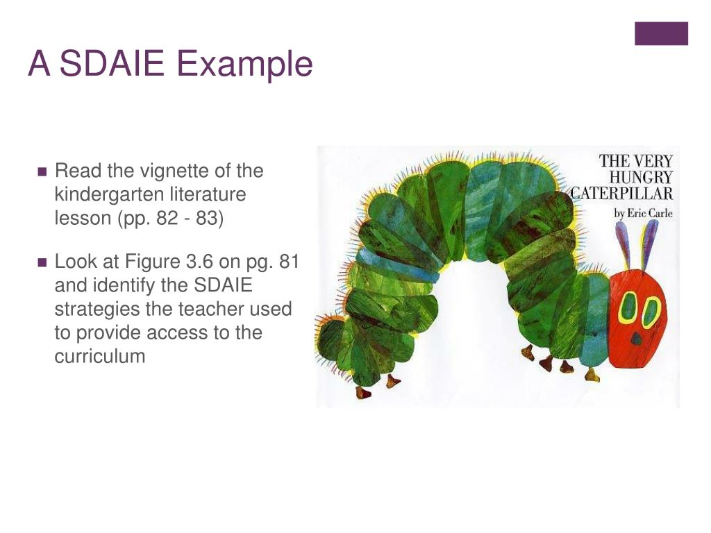 A SDAIE Example