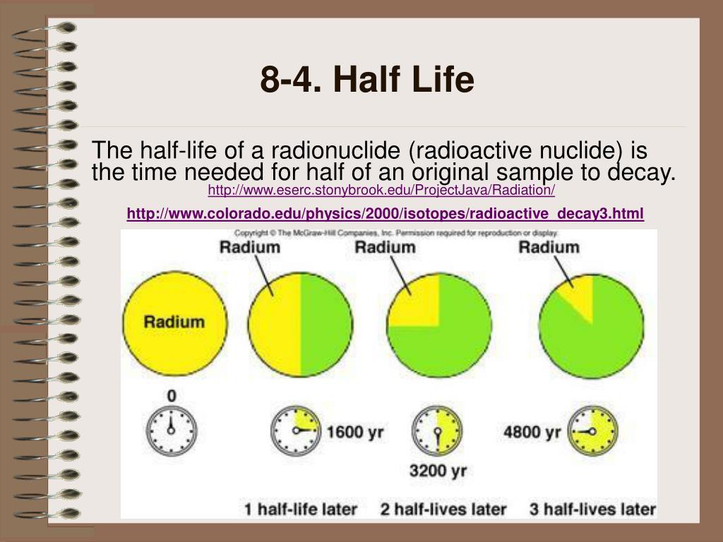 8-4. Half Life