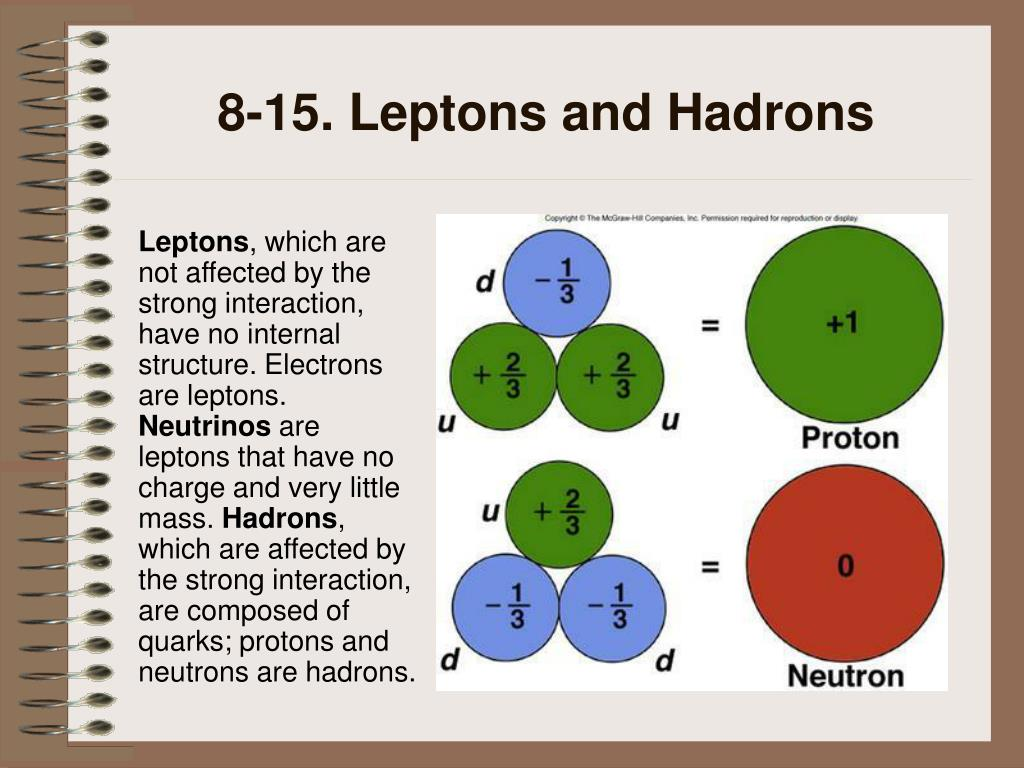 8-15. Leptons and Hadrons