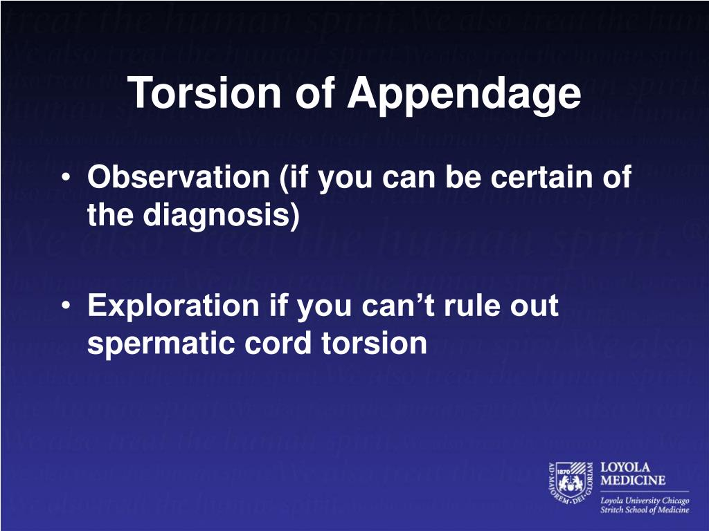 Torsion of Appendage