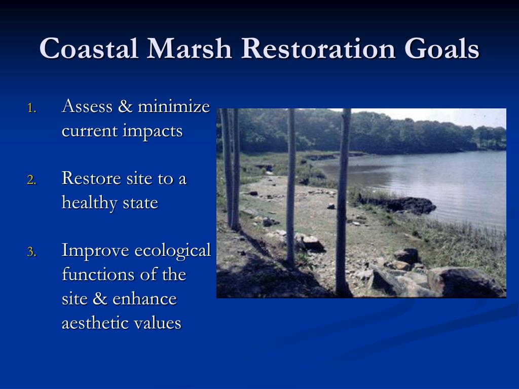 Coastal Marsh Restoration Goals