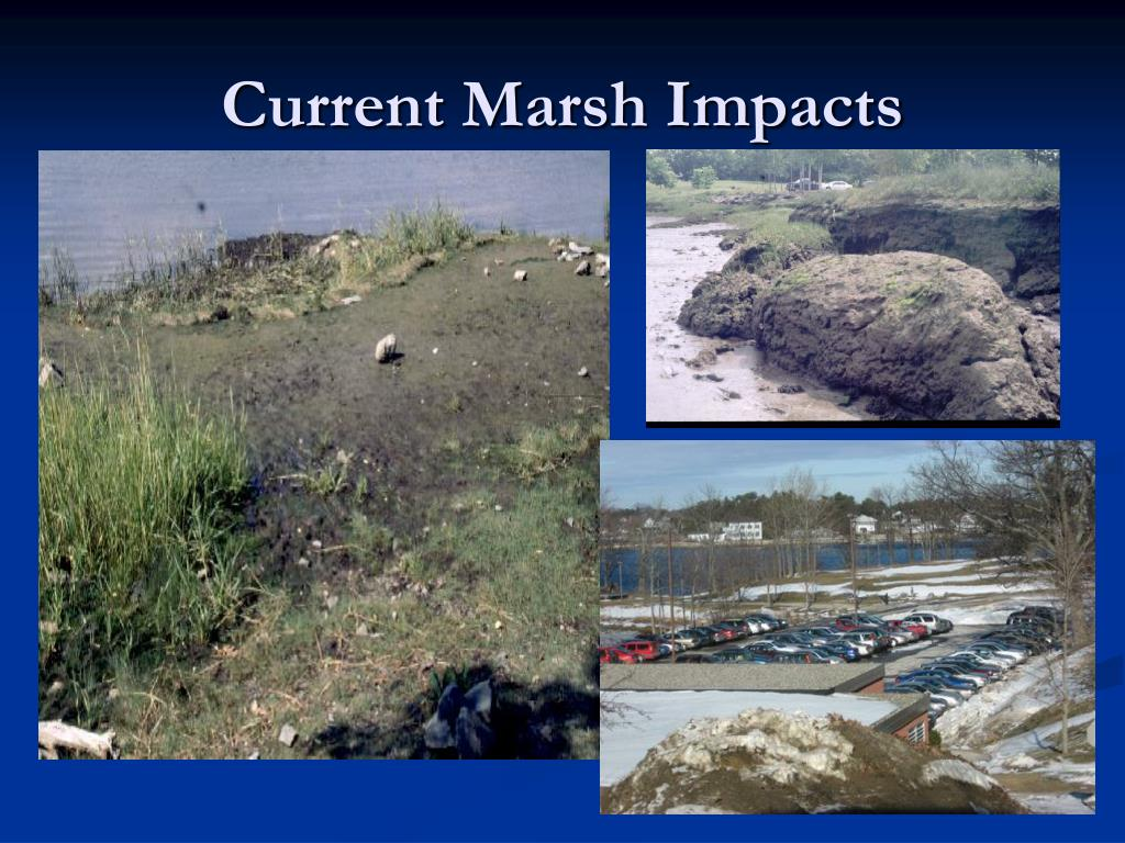 Current Marsh Impacts
