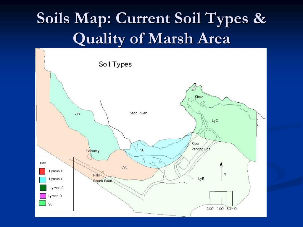 Soils Map: Current Soil Types & Quality of Marsh Area