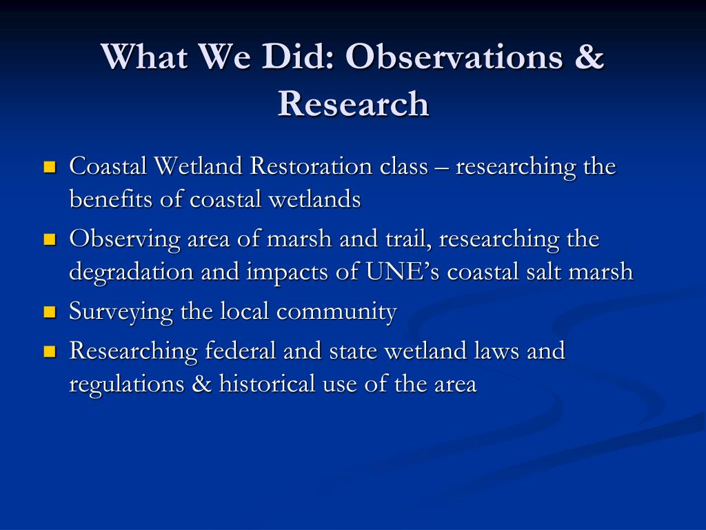What We Did: Observations & Research