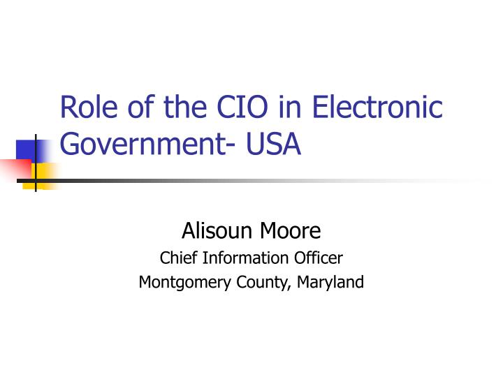 Role of the cio in electronic government usa l.jpg