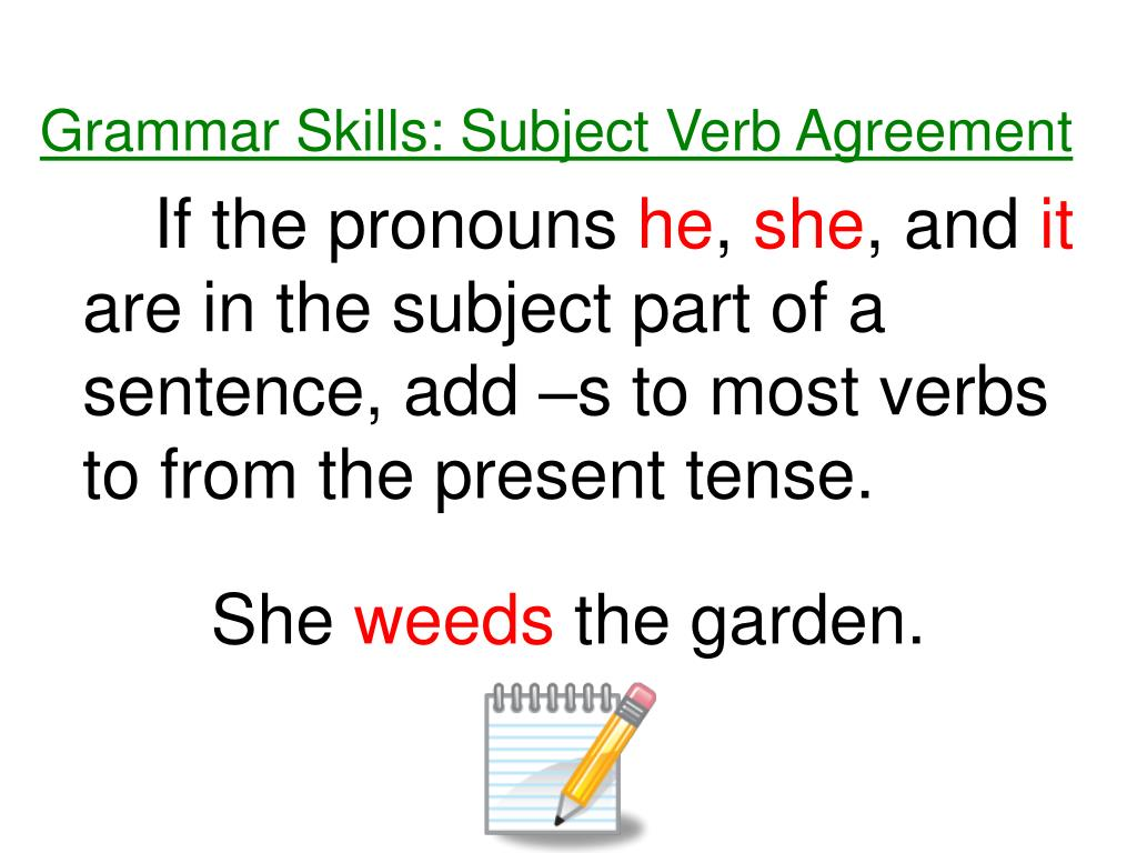 Grammar Skills: Subject Verb Agreement