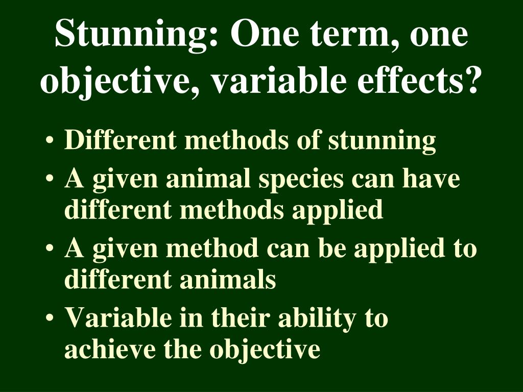 Stunning: One term, one objective, variable effects?