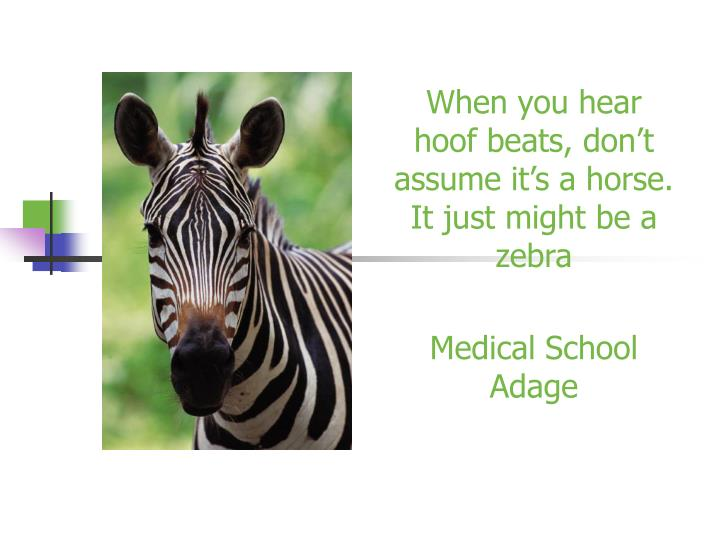 When you hear hoof beats don t assume it s a horse it just might be a zebra medical school adage