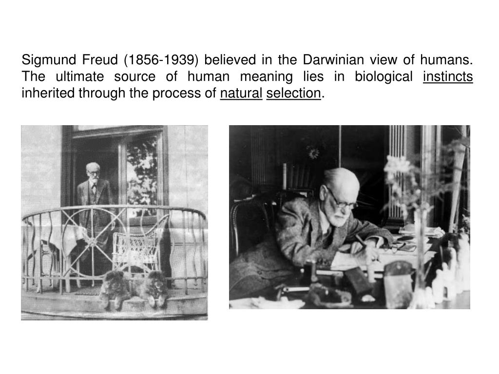Sigmund Freud (1856-1939) believed in the Darwinian view of humans. The ultimate source of human meaning lies in biological